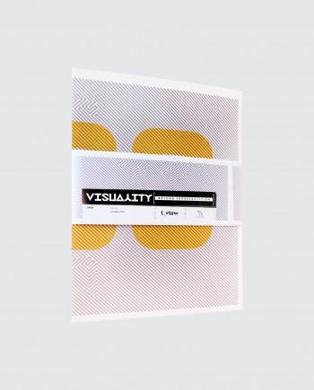 Visuality 2012